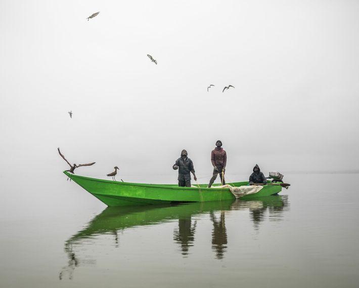 Al amanecer, estos pescadores levantan sus redes en el lago Naivasha mientras las gaviotas y las ...