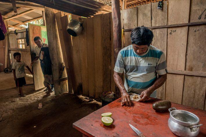 Timoteo Toish Matina, el líder del pueblo Awajun denominado Pangki, prepara una bebida medicinal hecha con jengibre, limón y otras hierbas. El pueblo ...