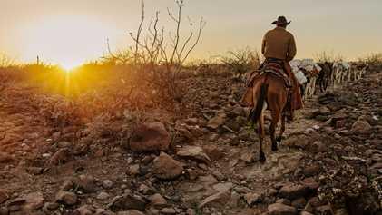 Los vaqueros mexicanos luchan por mantener un estilo de vida tradicional
