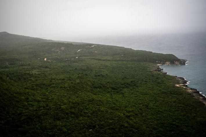 Los tramos occidentales de la península sur de Haití son áreas montañosas y en su mayoría ...
