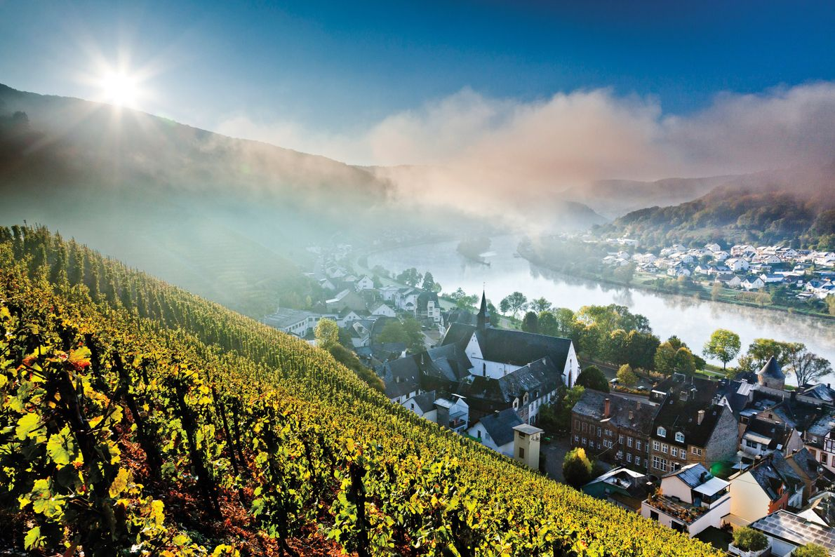 moselle-river-valley-western-europe