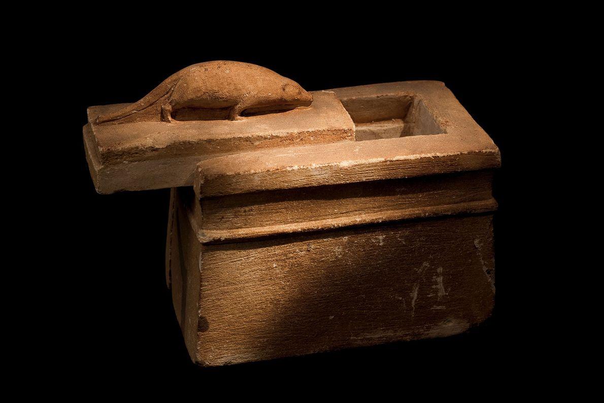 Una musaraña en un diminuto ataúd de piedra identifica su contenido.