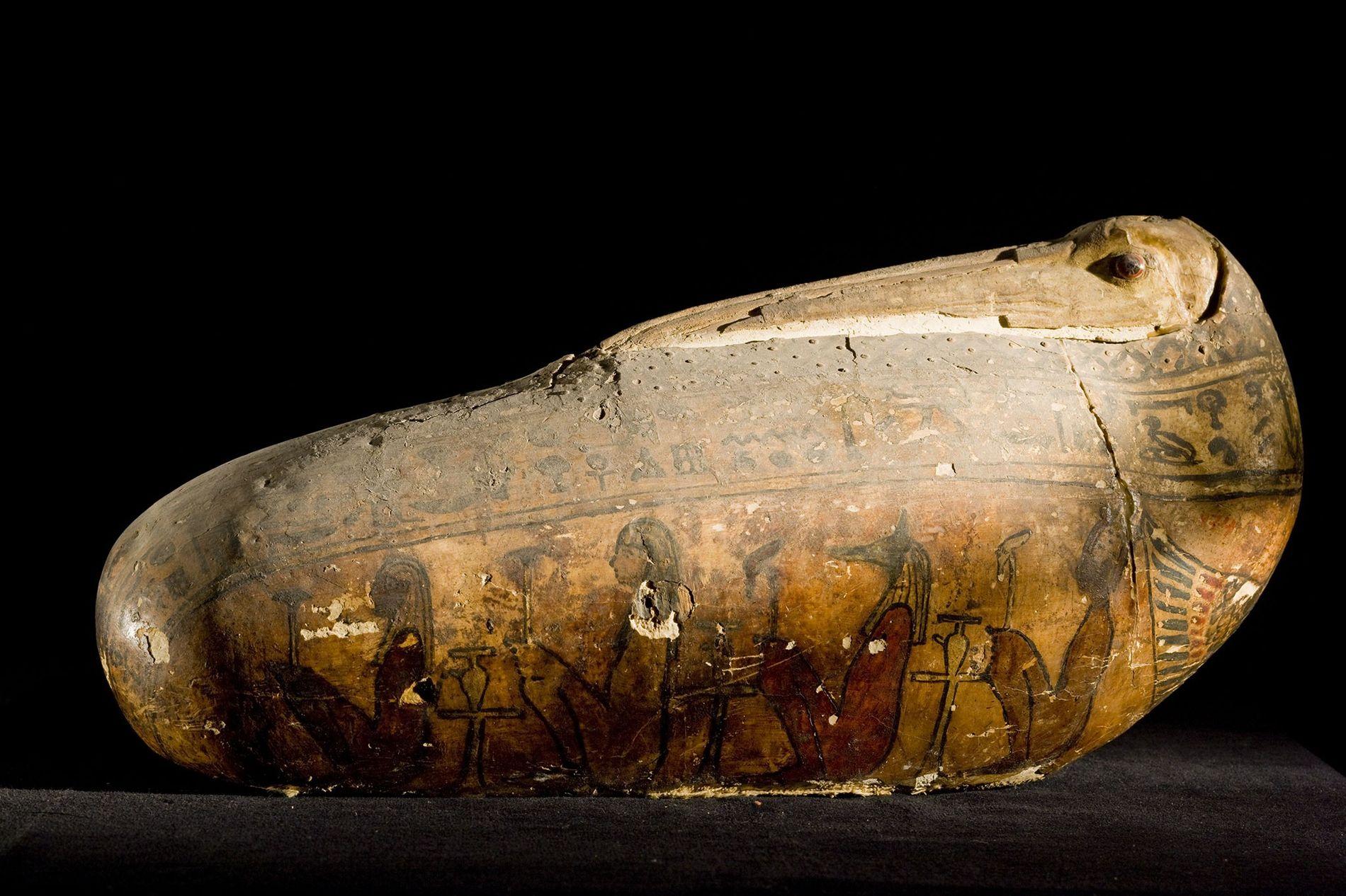 El inusual sarcófago de una momia votiva de ibis —un casco de lino y yeso — ...