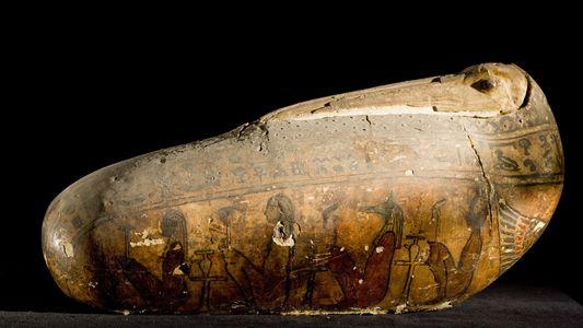 Los egipcios antiguos momificaron millones de aves. ¿De dónde las sacaron?