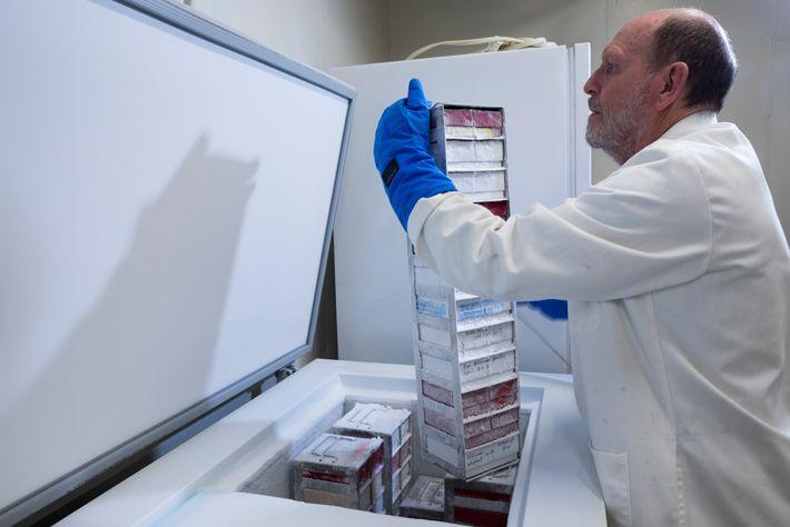 El científico Mike Power, que cura y mantiene el depósito de leche, saca una pila de ...