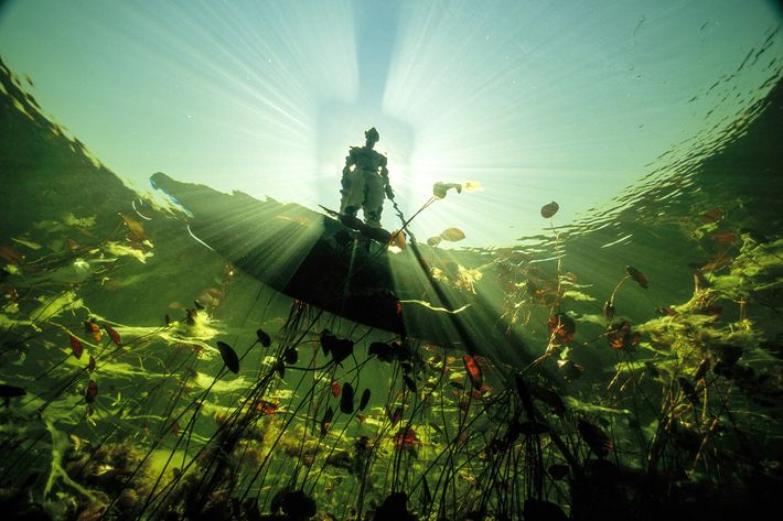 2004   Un bosquimano observa las aguas color esmeralda del río Okavango de Botswana.En una región afectada por la sequía, las ...