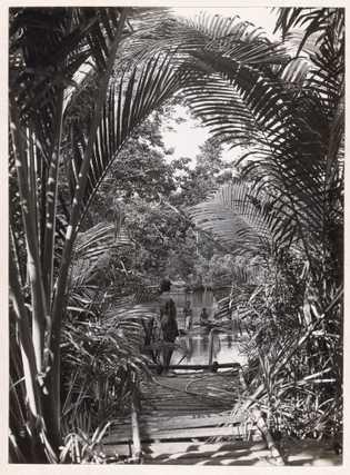 En 1921, el capitán Frank Hurley puso ver el río Opi en las selvas de Papua ...