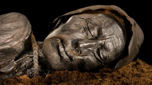Investigadores revelan cuál fue la última comida del hombre de Tollund antes de morir