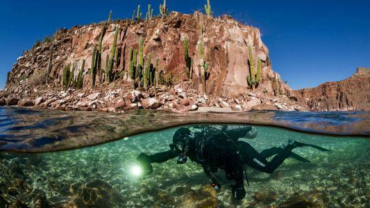Los expertos investigan dónde podrían surgir los próximos océanos