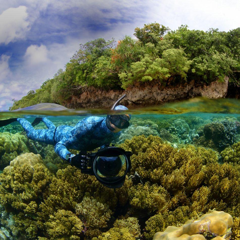 National Geographic Society premia a defensores de fauna y lugares salvajes