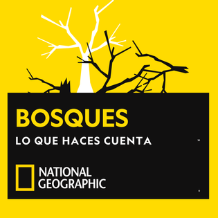 ng_rd_podcast_episodio-bosque