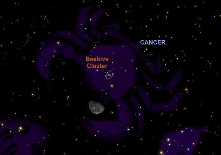 El 27 de noviembre, la Luna menguante estará justo debajo del Cúmulo del Pesebre.
