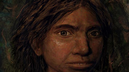 Una ilustración muestra el posible aspecto de un denisovano. La investigación genética que creó un modelo ...
