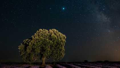 Gran conjunción de planetas: Júpiter y Saturno se verán muy cercanos en el cielo