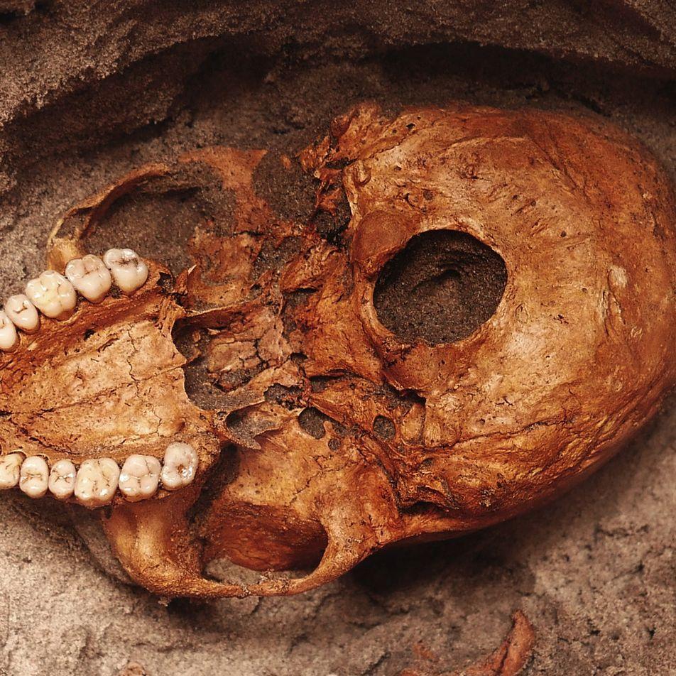 Huesos que datan de 1.000 años representan las víctimas más antiguas de tsunami en África Oriental