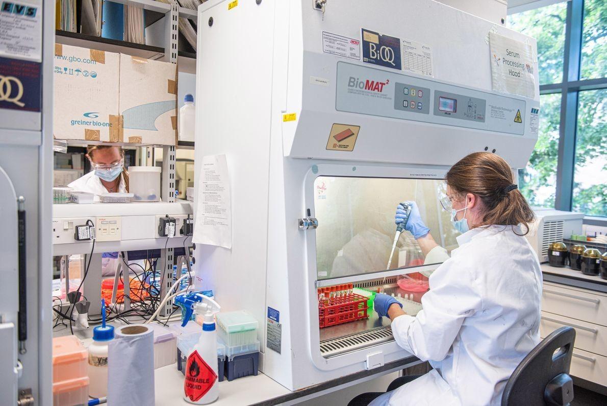 Antes de la pandemia de Sars-CoV-2, la Universidad de Oxford en el Reino Unido desarrolló una ...