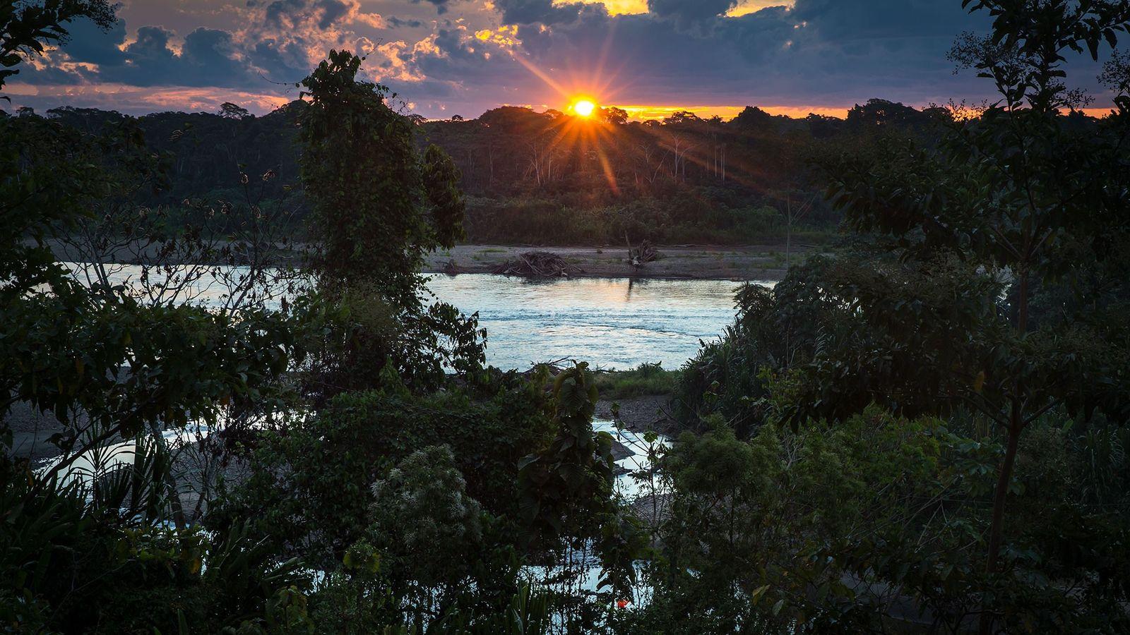 Reserva Comunal Amarakaeri, un área protegida manejada por el gobierno peruano junto con la población local.