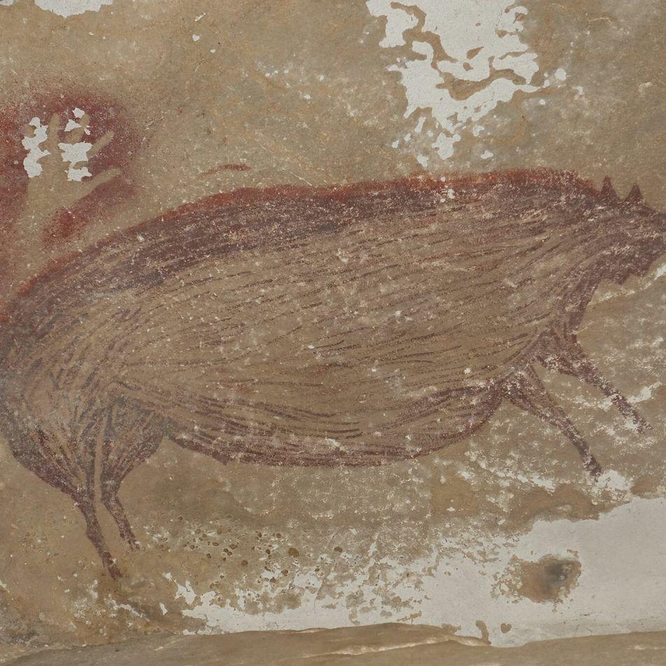Pintura de 45.500 años de un cerdo salvaje es la obra de arte figurativo más antigua ...