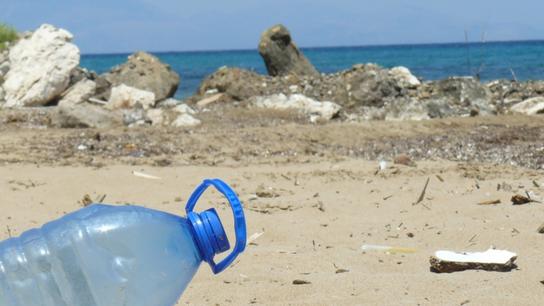 Las botellas de plástico se acumulan en nuestras playas.
