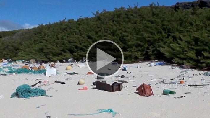38 millones de pedazos de basura de plástico cubren esta isla remota