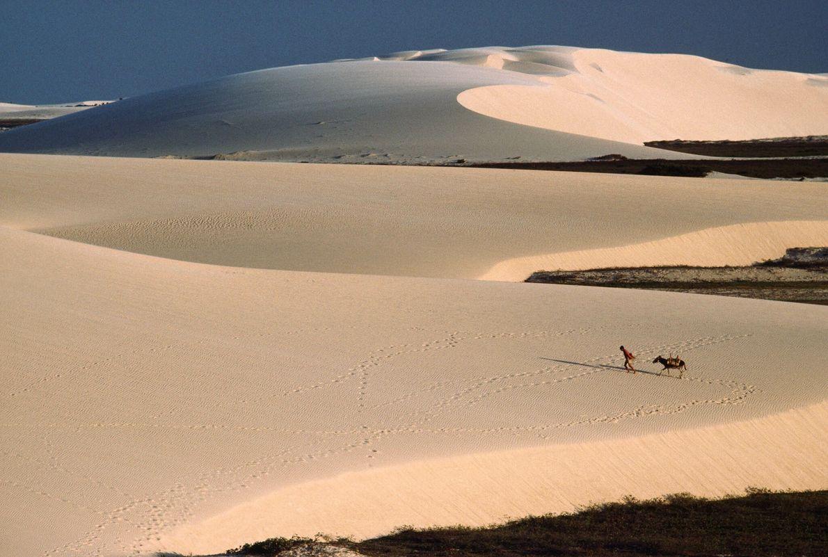 Sobre las dunas