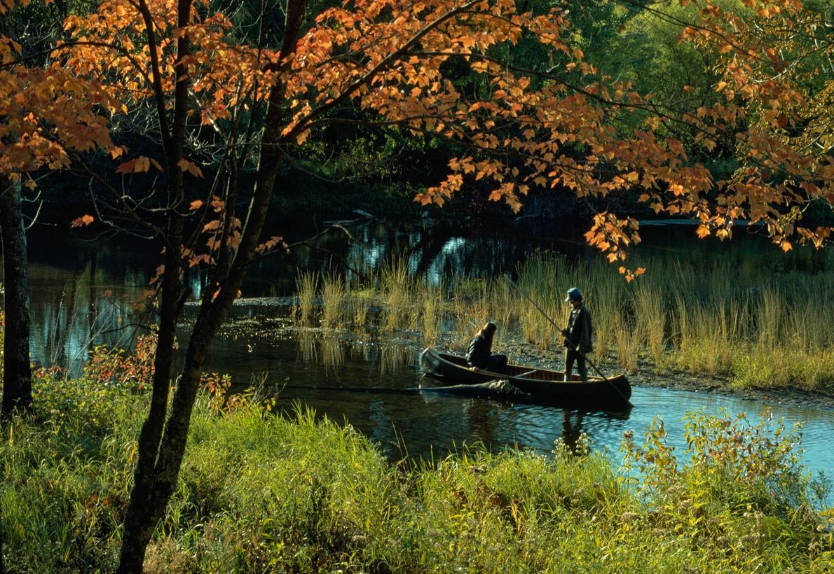Exploradores de río