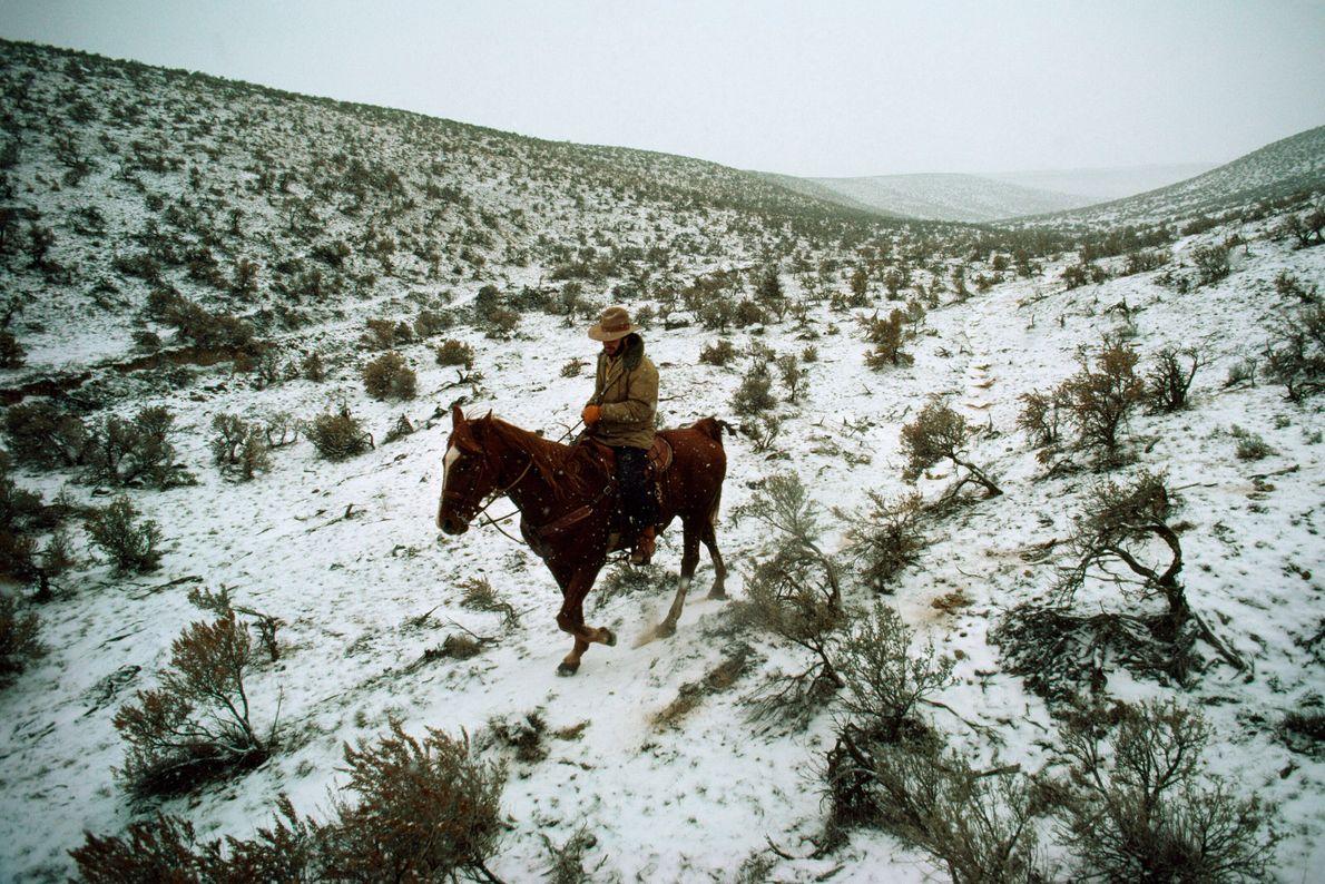 Valle de Yakima