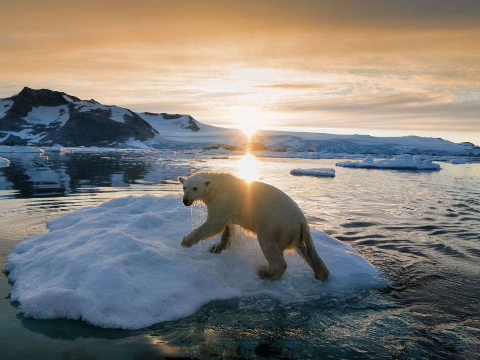 22 imágenes impresionantes de aventuras heladas en Groenlandia