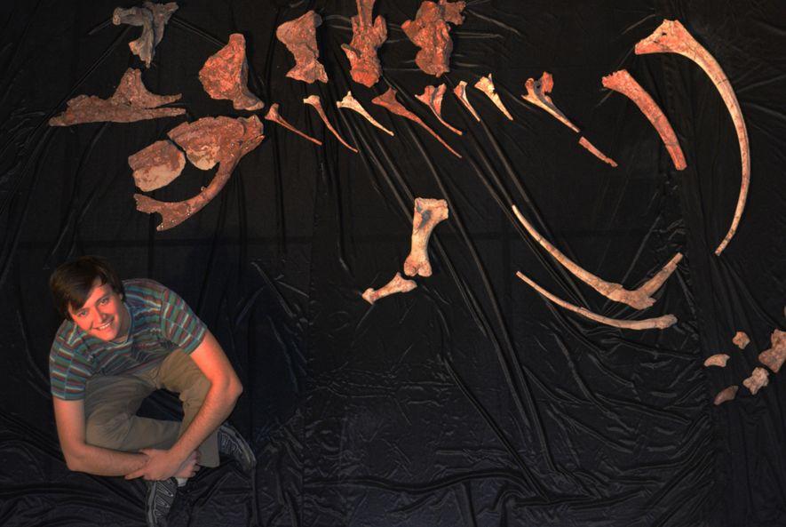 #NGXplorers: Encuentran nuevas especies de dinosaurios en el sur de Argentina