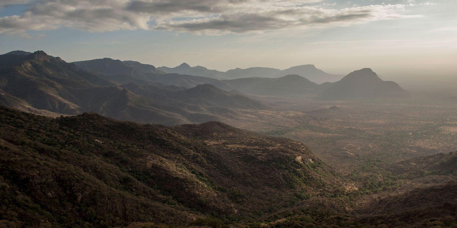 Para mantener el planeta floreciente, el 30% de la Tierra necesita protección para el 2030