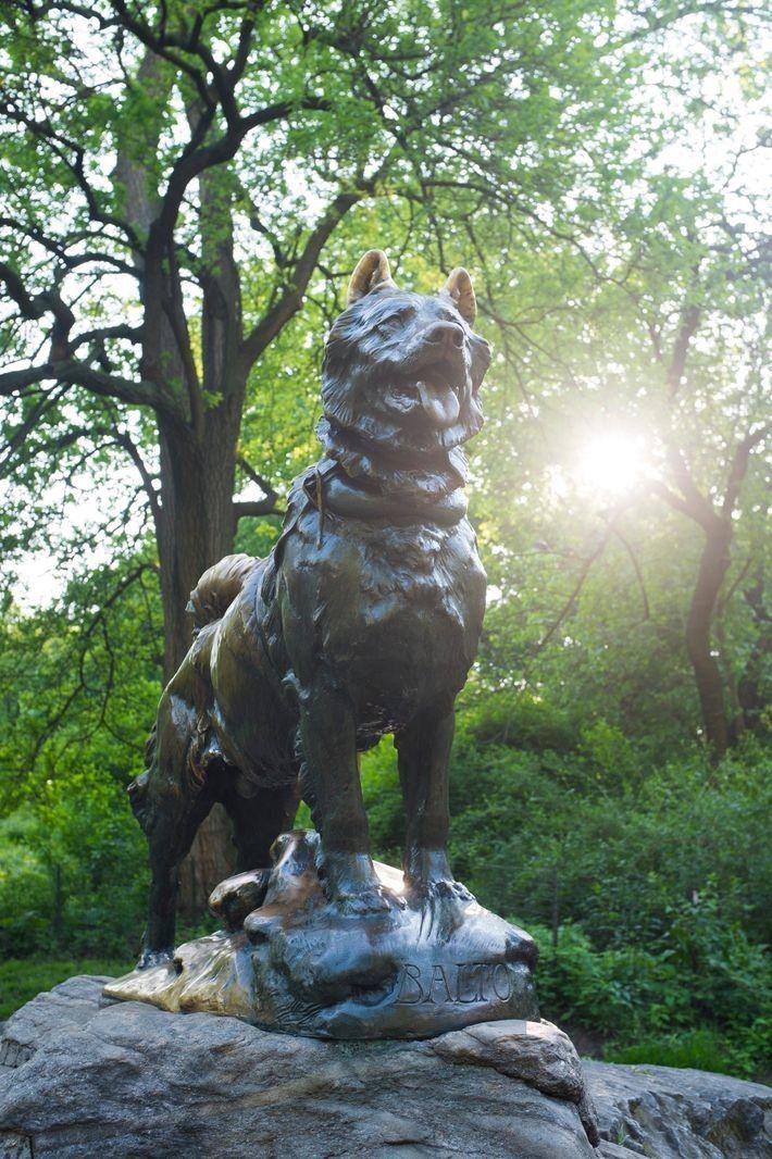 La estatua de Balto en Central Park, Nueva York. Aunque la placa dedica el monumento a ...