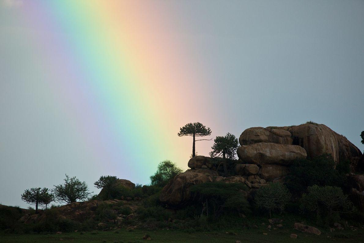 PARQUE NACIONAL MONTES CHYULU, KENIA