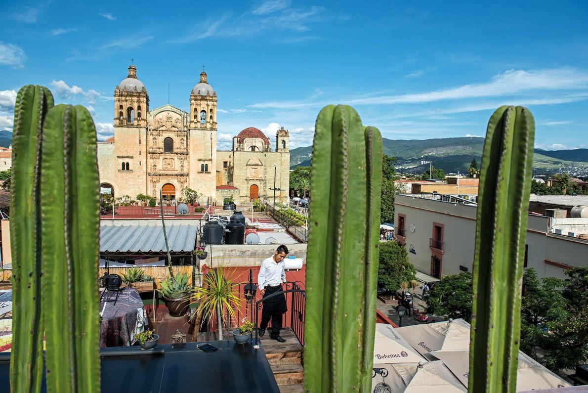 Un panorama del Templo de Santo Domingo visto a través de los cactus en la azotea ...