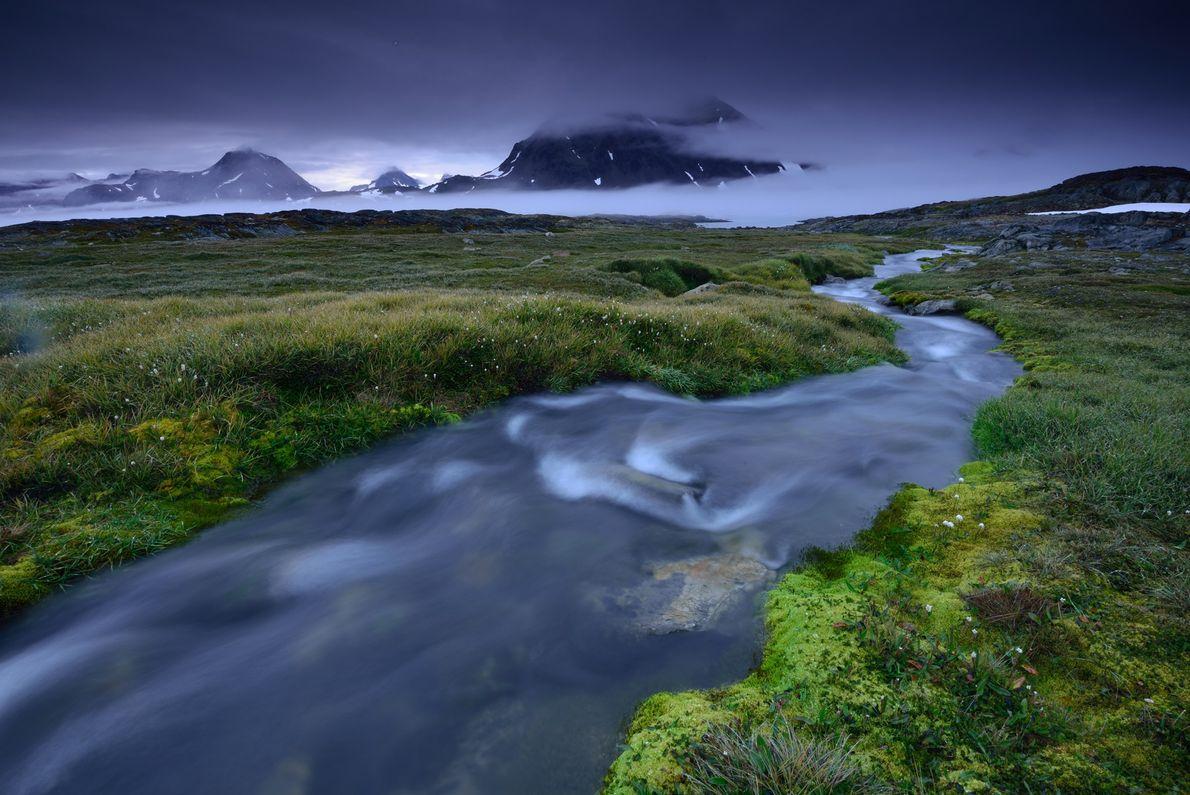 La flora verde abunda a lo largo de las orillas del río en una pequeña isla ...
