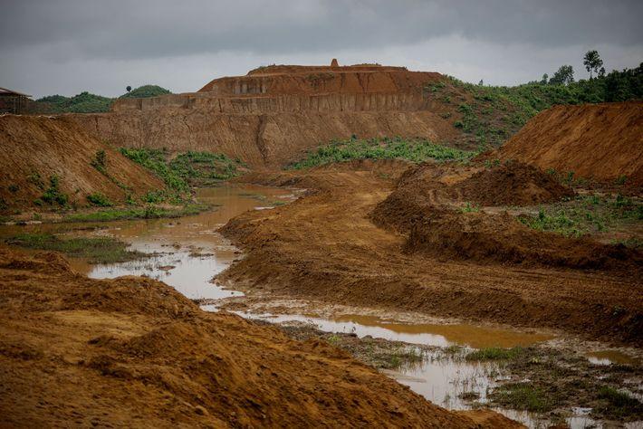 Para dejar espacio a los refugiados rohinyá, Bangladesh ha talado 4.000 hectáreas de bosque y han ...