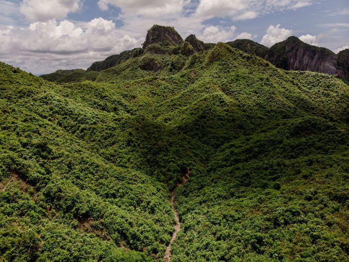 El santuario de fauna silvestre de Teknaf, junto al campo de Kutupalong, es uno de los ...