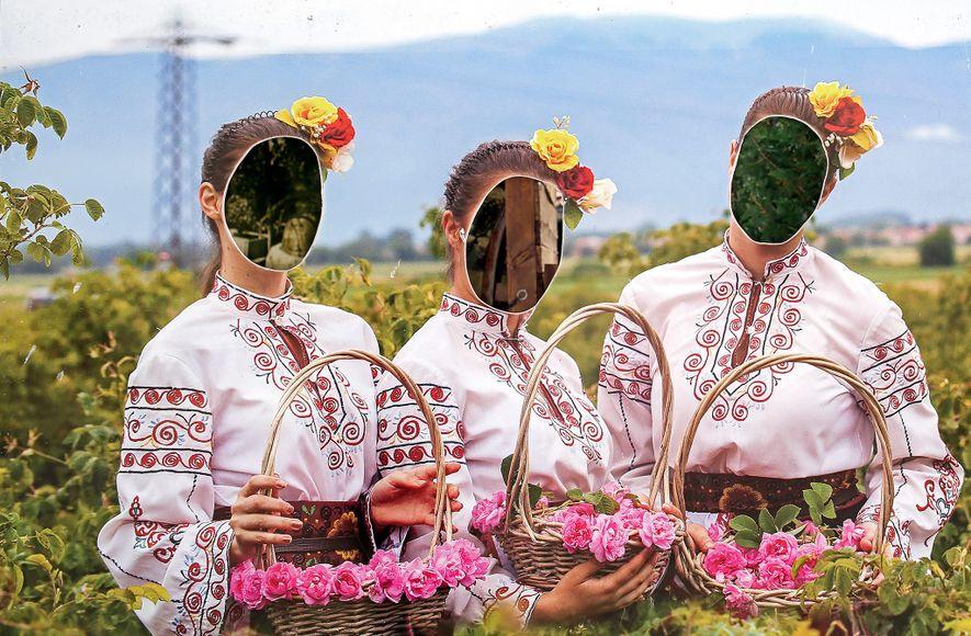 El Instituto de Rosas y Plantas Aromáticas, una academia de investigación y agricultura en Kazanlak, Bulgaria, ...