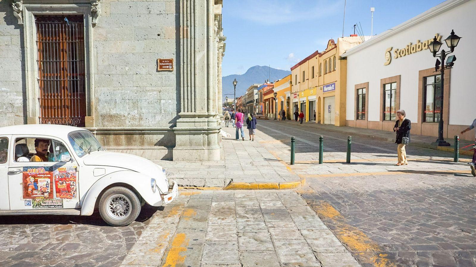 Oaxaca Bug on the road