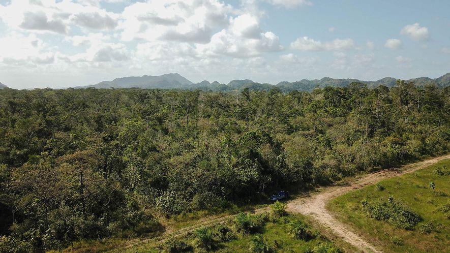 Guatemala, alguna vez considerada como los pulmones de América Central, perdió el 17 por ciento de ...