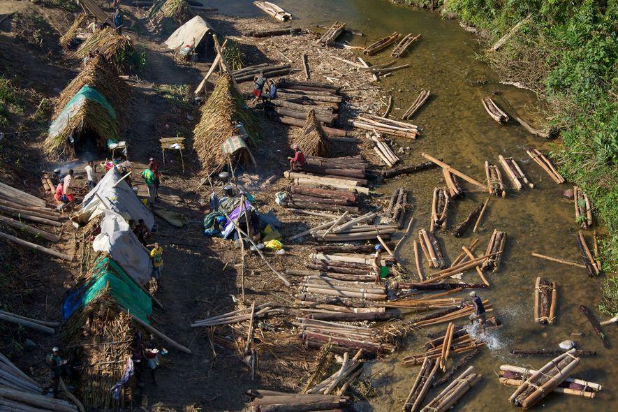 En un campamento de tala en Madagascar, los troncos de rosul se agrupan para flotar río ...