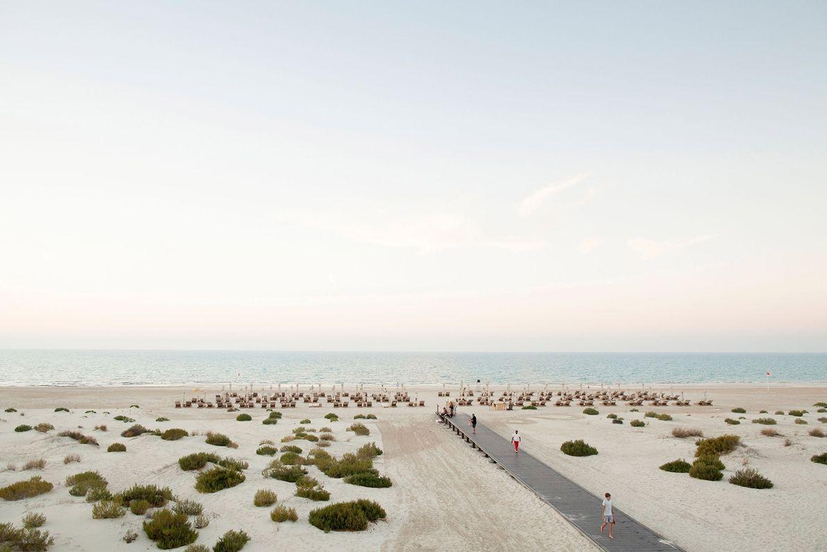 Saadiyat, Abu Dhabi