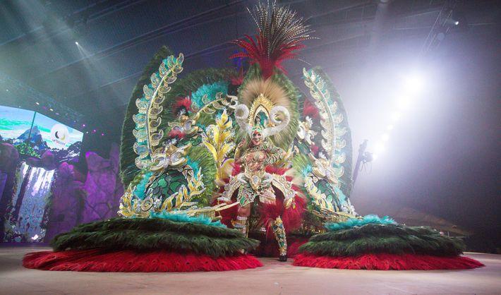 Artistas con trajes coloridos y elaborados actúan en el Carnaval de Santa Cruz de Tenerife en ...