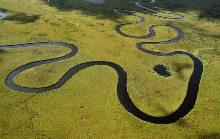 El río Okavango, que serpentea entre la hierba, es el sustento de esta región. Más de ...