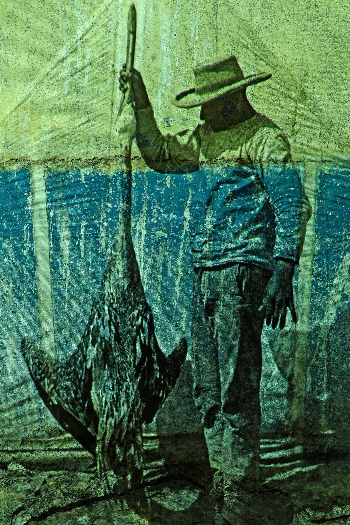 Décadas atrás, en los días de apogeo del comercio de guano, los trabajadores perturbaban a las ...
