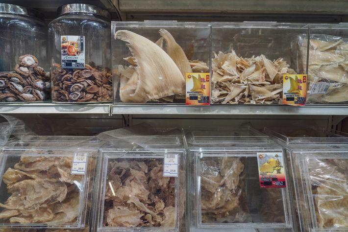 Las aletas de tiburón secas se clasifican para su venta en Singapur, un centro del comercio ...