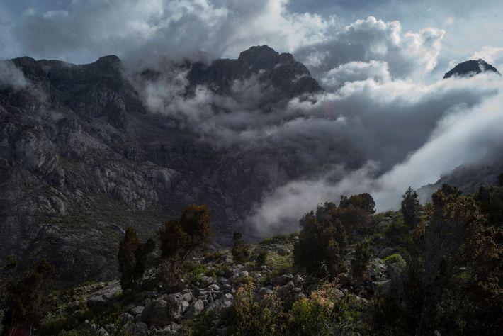 Como el macizo costero más alto del mundo, la Sierra Nevada de Santa Marta representa un ...