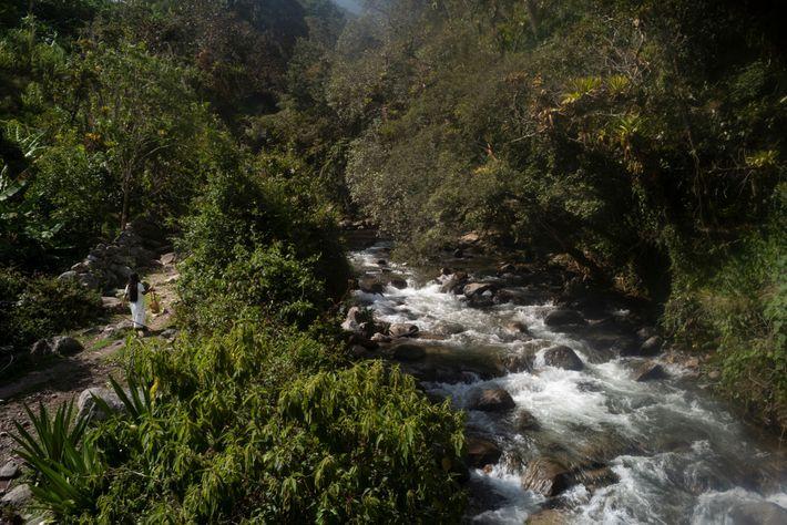 Una mujer Arhuaco camina junto al río Guatapurí en las afueras de Sogrome. En esta región ...