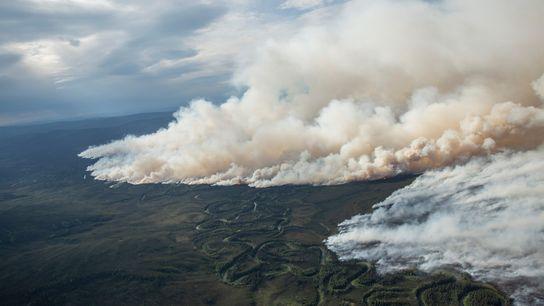 Desde California hasta Alaska y Australia, los incendios forestales en el mundo están empeorando cada vez ...