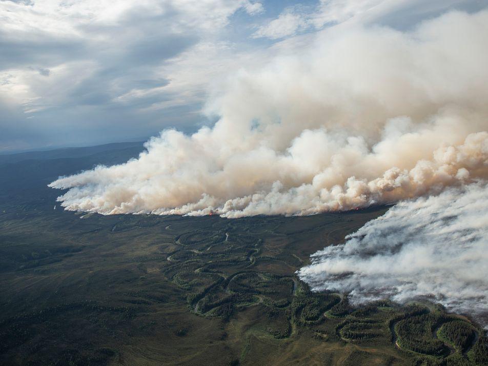 Cómo la inhalación del humo de los incendios forestales puede afectar a la salud