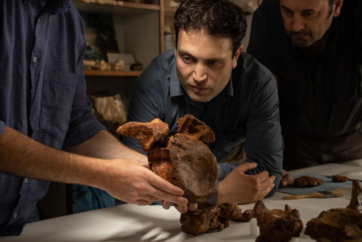 Los miembros del equipo de Simone Maganuco, Nizar Ibrahim y Cristiano Dal Sasso examinan una de ...